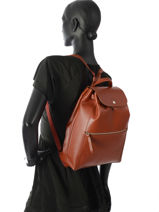 Longchamp Backpack Brown-vue-porte