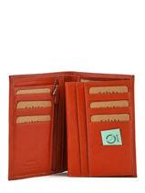 Wallet Leather Katana Orange basile 853017-vue-porte