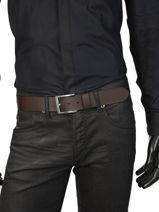 Belt Levi