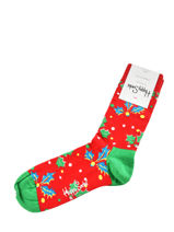 Chaussettes xmas holly-HAPPY SOCKS-vue-porte