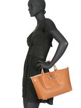 Longchamp Roseau luxe Handbag Brown-vue-porte
