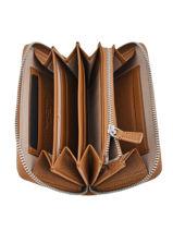 Leather Elettra Wallet Gianni chiarini Brown accessoires PF5043-vue-porte