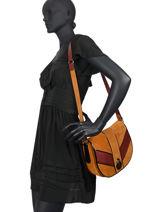 Longchamp Cavalcade graphique Messenger bag Brown-vue-porte