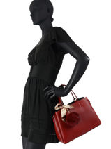 Top Handle Sable Leather Miniprix Red sable DQ815-vue-porte