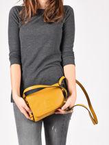 Crossbody Bag Balade Leather Etrier Yellow balade EBAL12-vue-porte