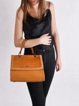 Top Handle Arizona Leather Etrier Brown arizona EARI23-vue-porte