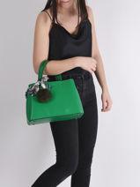 Top Handle Sable Leather Miniprix Green sable DQ815-vue-porte