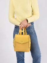 San Diego Backpack David jones Yellow san diego 2-vue-porte
