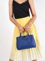 Longchamp Roseau Sacs porté main Bleu-vue-porte