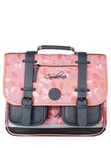 Satchel For Girls 3 Compartments Cameleon Pink vintage fantasy CA41