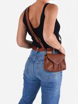 Medium Leather Suzon Crossbody Bag Paul marius Brown vintage S-vue-porte
