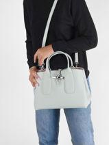 Longchamp Roseau Sacs porté main Vert-vue-porte
