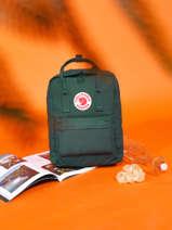 Backpack Kånken 1 Compartment Fjallraven Green kanken 23510