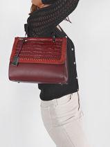 Top Handle Arizona Leather Etrier Violet arizona EARI23-vue-porte
