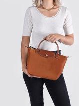 Longchamp Le pliage Handbag Brown-vue-porte