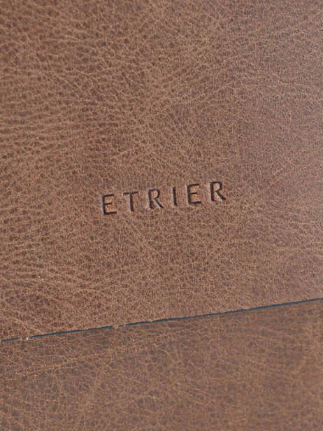 Crossbody Bag Etrier Brown spider ESPI05 other view 1