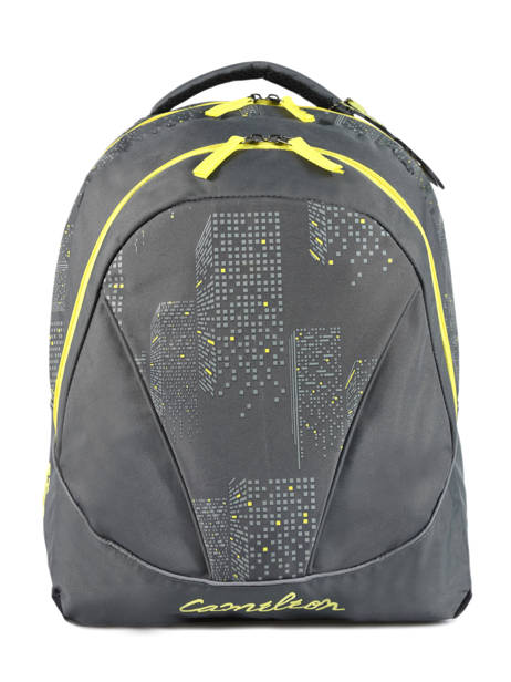 Backpack 2 Compartments Cameleon Gray basic PBBASD43